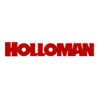 HOLLOMAN CORPORATION